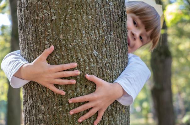dziewczynka obejmująca pień drzewa