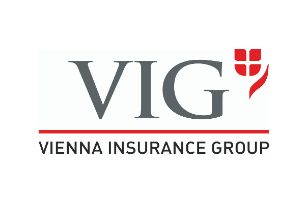 logo VIG